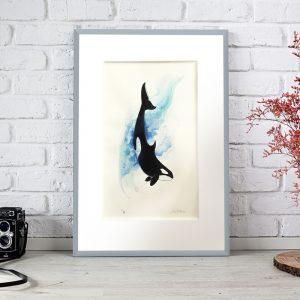 Cuadro Orca