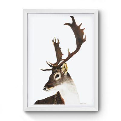 Cuadro Ciervo marco blanco 43 x 55 cm