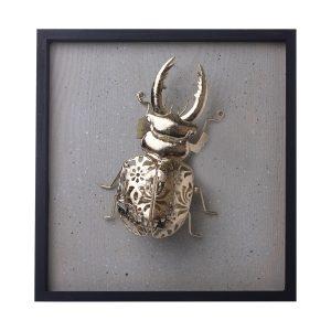 Placa Escarabajo Ciervo Gold 1