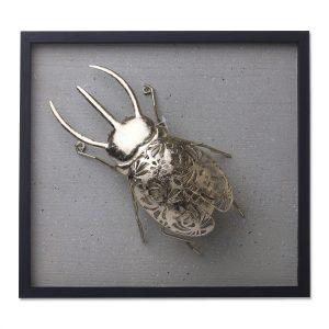 Placa Escarabajo Rinoceronte Gold 1